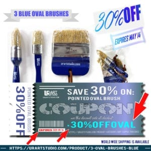 3 blue oval brushes 30% OFF discount coupon